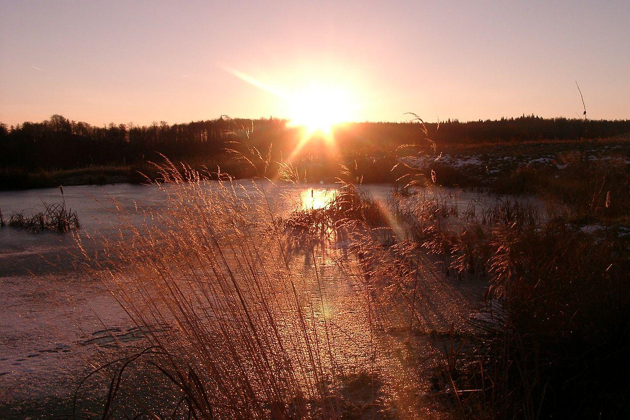 1280px-Sunrise_Tharandt_Forstgarten_2005_01_05_P11